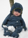 snow bundled